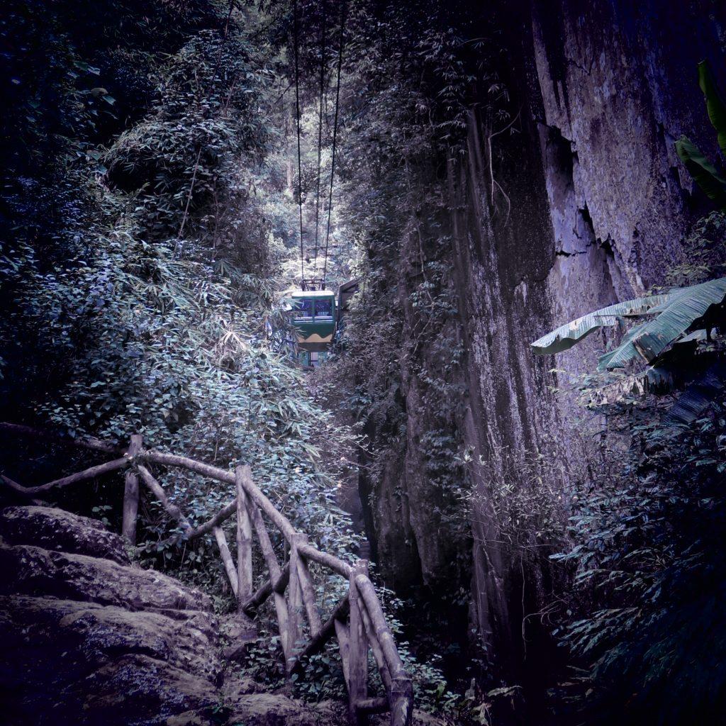 Téléphérique dans la jungle