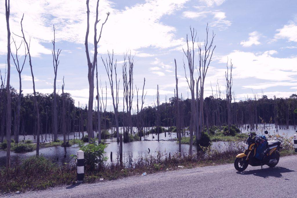 Paysage Laos