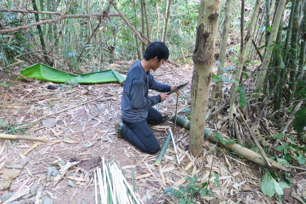 Prepa bambou