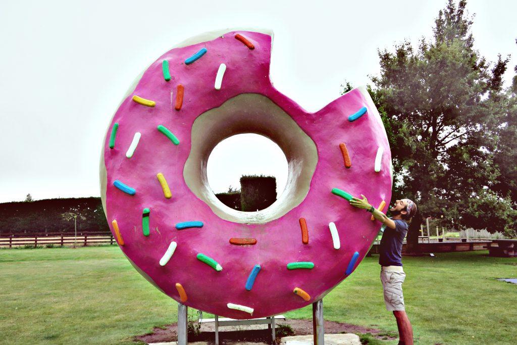 Hum Donut